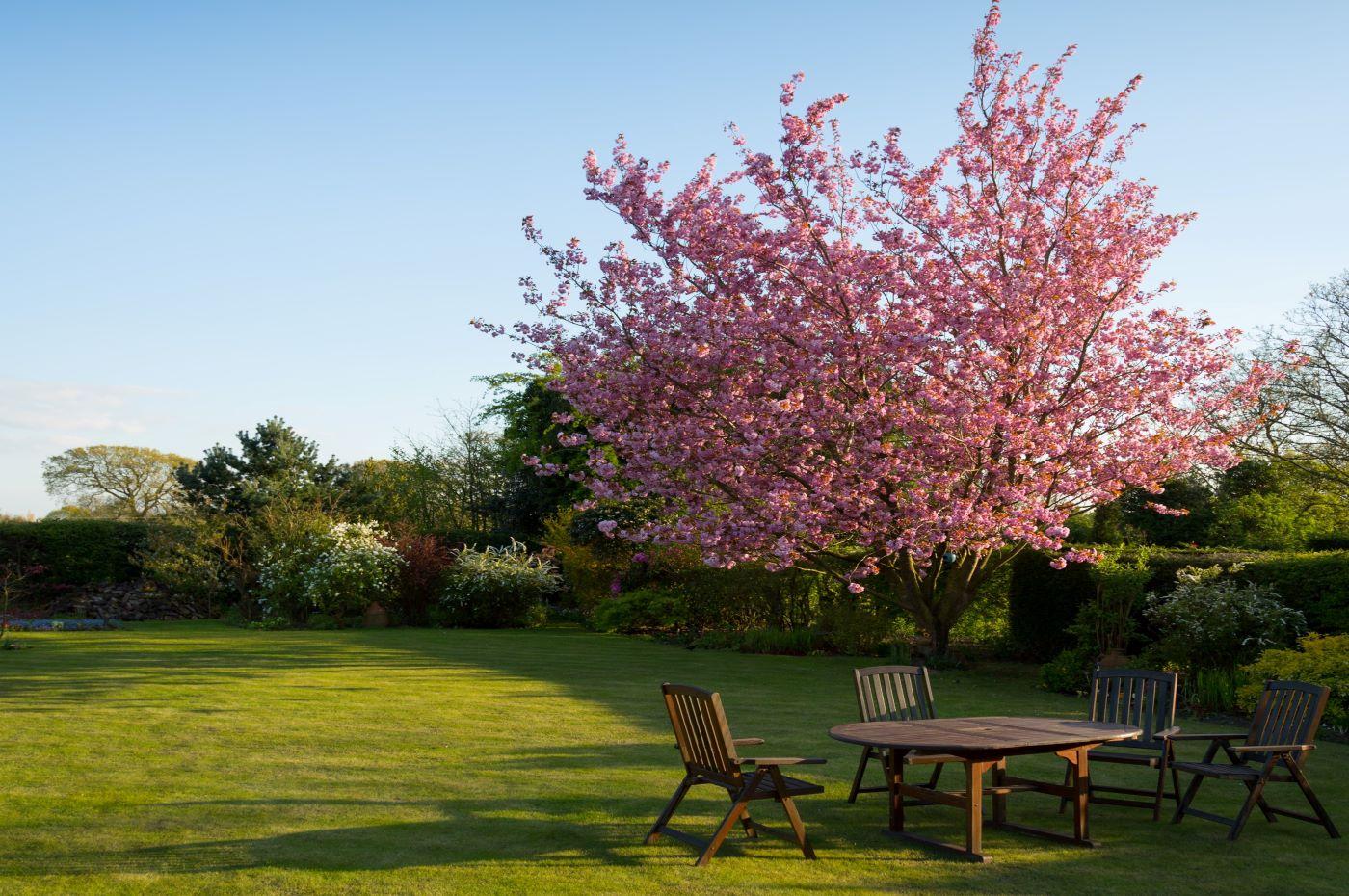 Votre jardin : un scénario en 4 actes